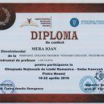 Îndrumător: Prof. Elena Laiu
