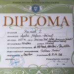 Îndrumător: Prof. Dan Țîrdea